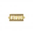 Plaqueta Zaynne - Metal zamac com corrente de strass e banho cataforético